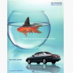 7th Art Print Portfolio - Toyota Camry Shark